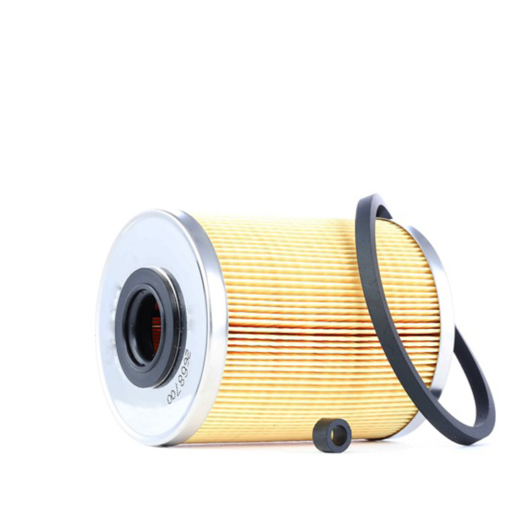 Quality Diesel Engine Fuel Filter 4501003 HDR2395P F1004 41650-502320 for GM
